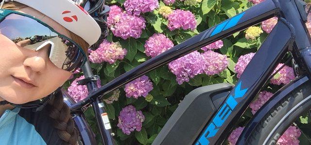 電動アシストクロスバイク、TREK(トレック)VERVE(バーブ)でサイクリングしてきましたー